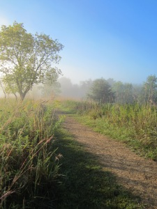 Afton state Park, Late august morning. Larry is coming... with breakfast!