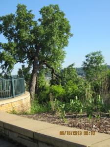 June, Mounds Park